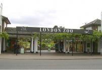 Conoce el zoológico de Londres
