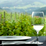 Conoce la increíble Ruta del Vino Txakoli