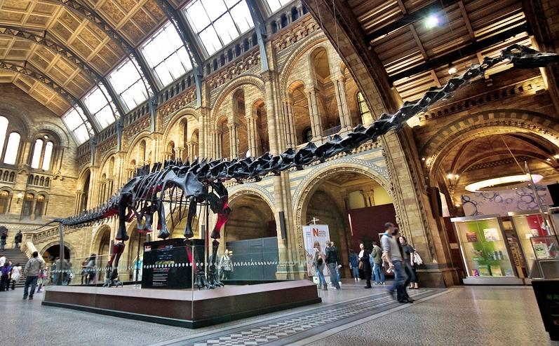 El Museo de Ciencias de Londres 2