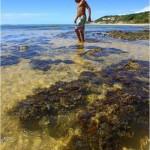 Brasil y su Praia do Espelho