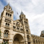 Visita el Museo de historia natural de Londres