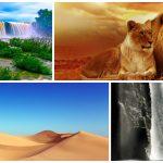 Cómo hacer fotografías profesionales en tus viajes